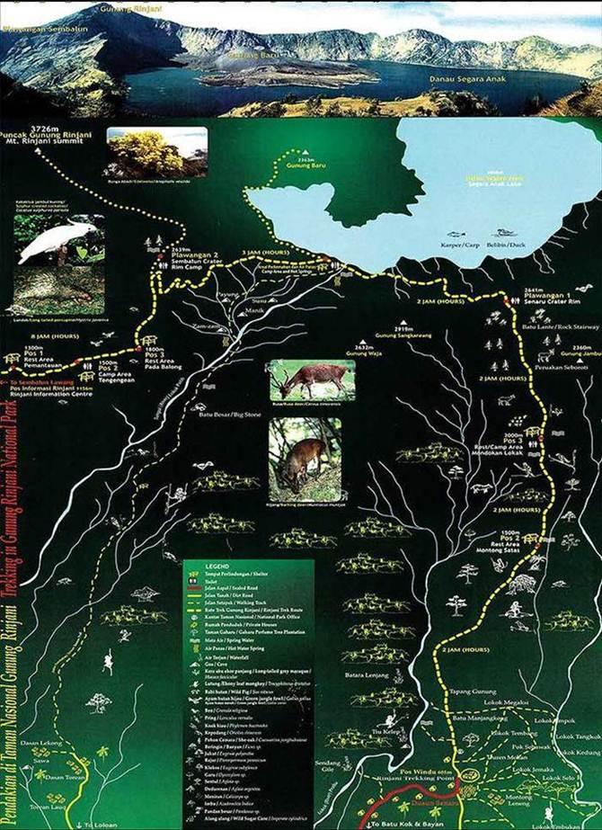 Mount Rinjani Trekking Map